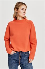 D cas sweater lm