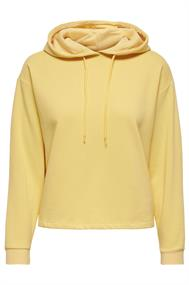 hoodie dames