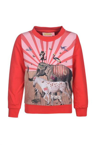 MP sweater lm